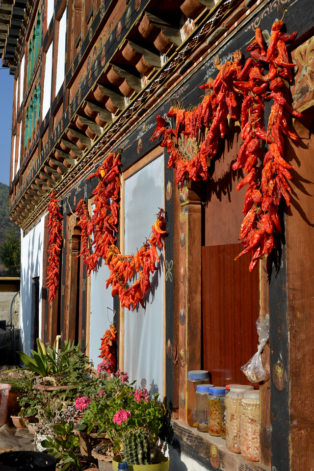 Red chillies which is staple food being dried outside shops and homes in Paro, Bhutan.