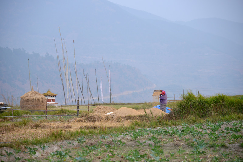 Villages in Punakha, Bhutan.