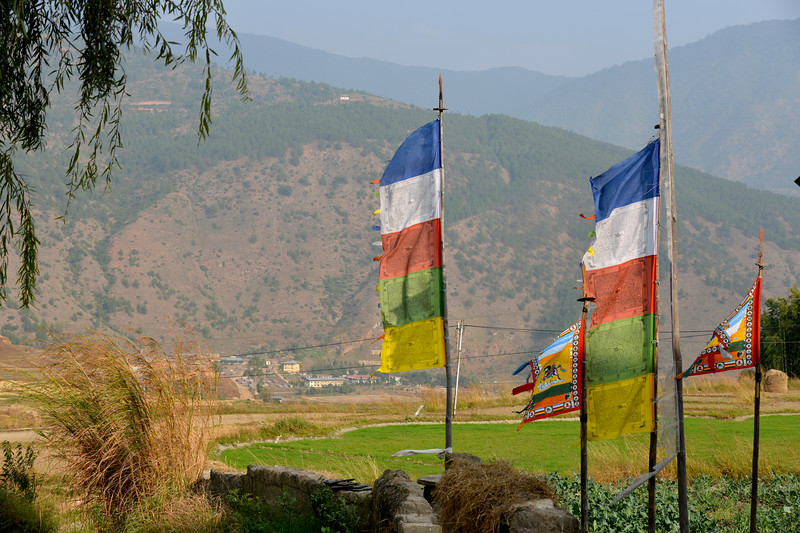 Near the Temple of Fertility (Chimi L'hakhang Temple).
