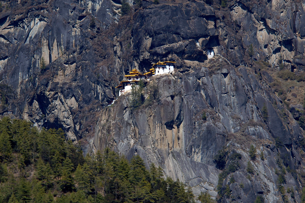 As seen from the road,the famous Taktshang (Tiger's Nest) Hermitage on the face of a sheer 1000m cliff. The place is about 10 km outside Paro and is highly sacred to the Bhutanese in that they believe Guru Rinpoche, the father of Bhutanese Buddhism landed here on the back of tigress. A 16 km road passes up the valley to the ruins of other fortress-monastery Drukyel Dzong, partly destroyed by fire in 1951.