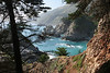 above McWay Falls