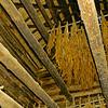 Inside Tobacco Barn
