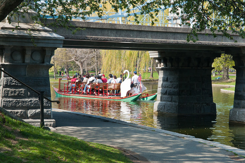 Swan Boat through the Bridge