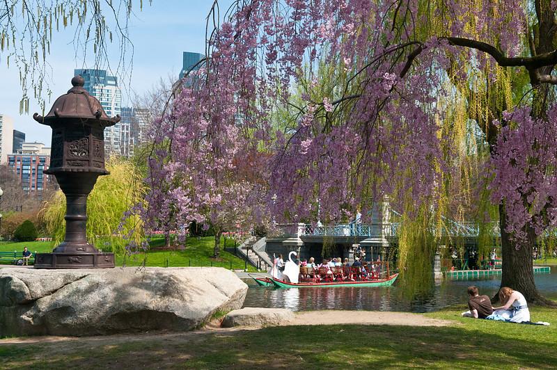 Enjoying the Boston Garden