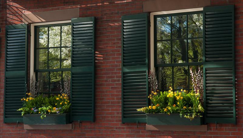 A Pair of Window Gardens