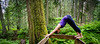 Yoga at Giant Cedars, Mount Revelstoke National Park, British Columbia, Canada.