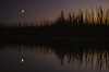 Tree silhouettes at dusk, Blue Lakes, Northern British Columbia.