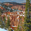 Firs and Hoodoos in the Snow