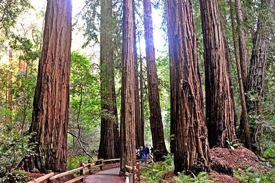 Carunungan California Road Trip 2012- 100