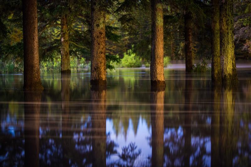 Torrential Rains of June 2013 in Banff National Park.