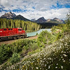 """Canadian Classic"", CP train at Morant's Curve, Banff National Park, Alberta, Canada."