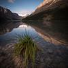 """""""Peyto Perfection"""" V, Peyto Lake, Banff National Park, Alberta, Canada."""