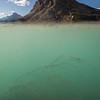 """Bow Lake Underwater"" V, Bow Lake, Banff National Park, Alberta, Canada."