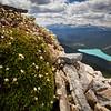 """Emerald Heights"", Wapta Mountain, Yoho National Park, BC, Canada."