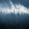 """Scenes from the 2013 Banff Centre Wilderness Photography Workshop"" IX, Kootenay National Park, Alberta, Canada."