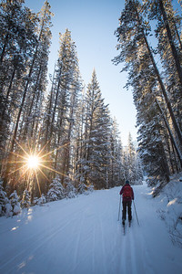 Cross country skiing, Banff National Park