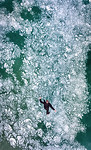 Frozen Bublles at Abraham Lake