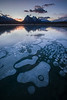 Frozen Bublles at Abraham Lake