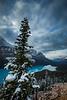 First snowfall at Peyto Lake, Banff National Park