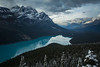 First snowfall at Peyto Lake, Banff National Park