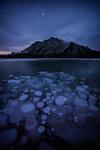 Frozen bubbles under stars at Abraham Lake
