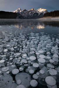 Frozen bubbles in Spray Lakes, Kananaskis