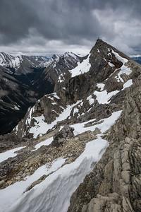 Scenes from Anthrozoan Mountain