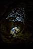Exploring Rats Nest Cave, Alberta