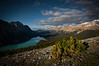 """Peyto Palette"" VII, Nighttime at Bow Summit, Banff National Park, Alberta, Canada."