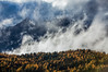 Clouds rising over golden larches, Mount Assinboine Provincial Park, British Columbia, Canada