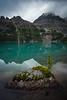 """O'Hara Bliss"" IV, Lake O'Hara, Yoho National Park, BC, Canada."