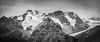 """Alpine Superhero"" VIII, Lake O'Hara, Yoho National Park, British Columbia, Canada."