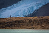 A man overlooking a glacial lake, Mount Robson Provincial Park, British Columbia, Canada
