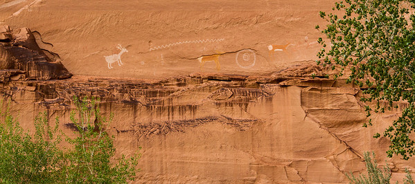 Petroglyphs (light color) and pictographs (painted color) near Antelope House ruins.