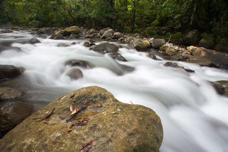 Rushing creek in Three Rivers area, Dominica.