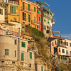 Hillside Homes on Manarola