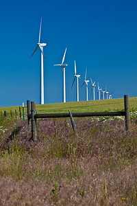 Windmills near Condon, OR
