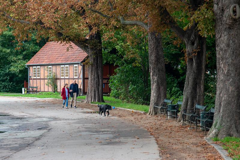 Couple walking their dog in a boulevards at Copenhagen, Denmark.