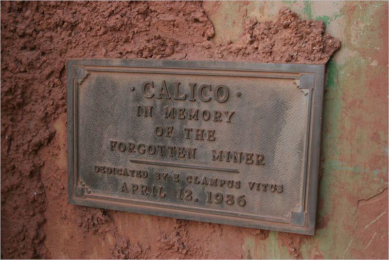 Calico-04