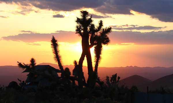 Mojave Exploration 2015
