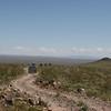 MojaveTrail-20090313-19