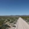 MojaveTrail-20090313-11