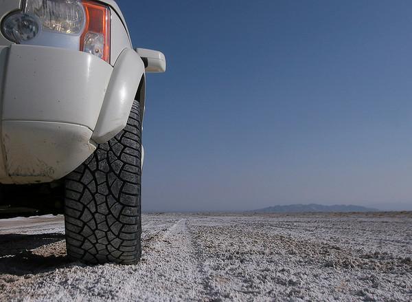 Mojave Trail - 2009