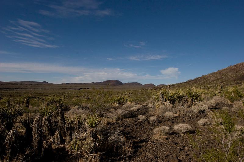Near the Cima Lava fields.