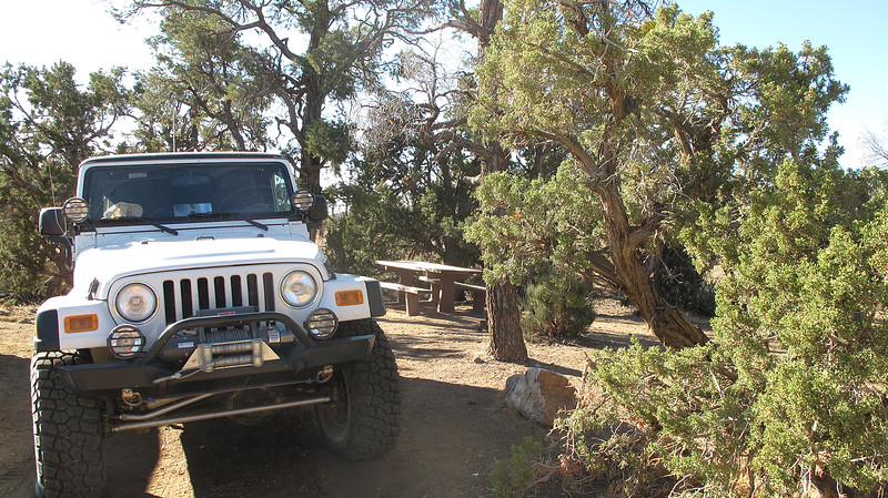 The very pleasant Mid Hills Campground, surrounded by Juniper trees, and clean, level tent sites