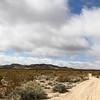 Mojave_2011-55