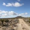 Mojave_2011-64
