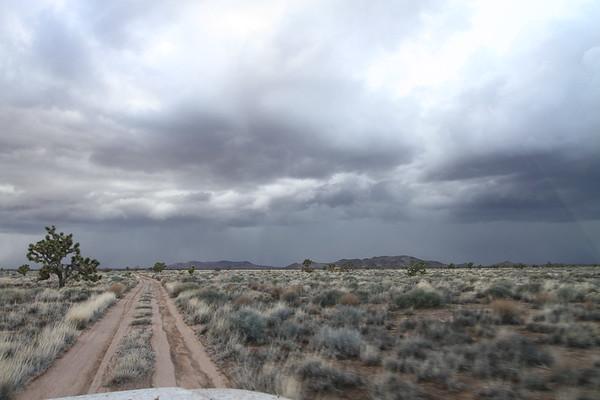 Mojave Trail 2011
