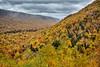 Fall on the Cabot Trail, Cape Breton Highlands National Park, Nova Scotia.
