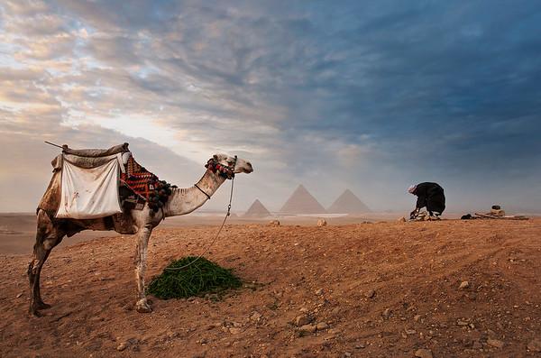 Desert landscape.  Cairo, Egypt , 2010